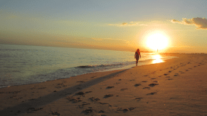 Work and Travel in Cape May New Jersey